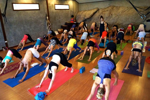5 Reasons Sign Up Ashtanga Vinyasa Yoga Teacher Training
