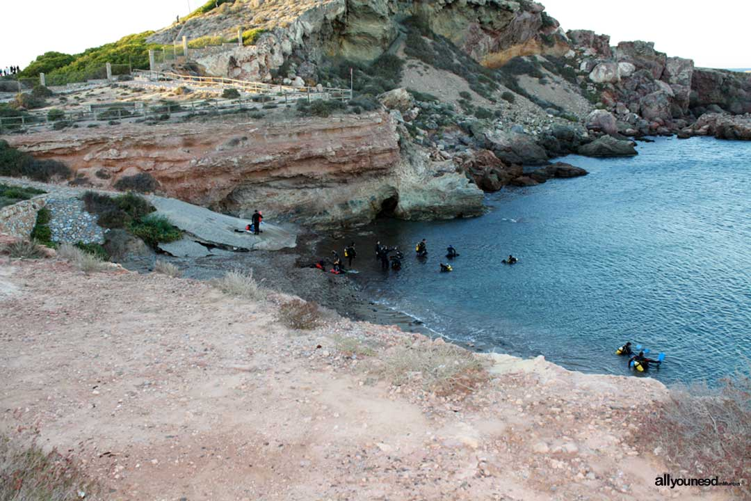 Las Calas Del Faro Divingbuceo