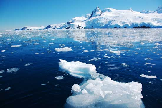 Artic sea ice