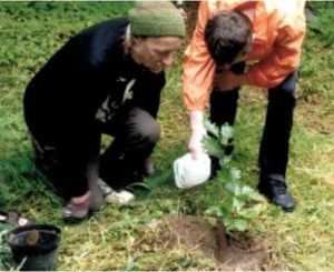 Ted Cook planting trees