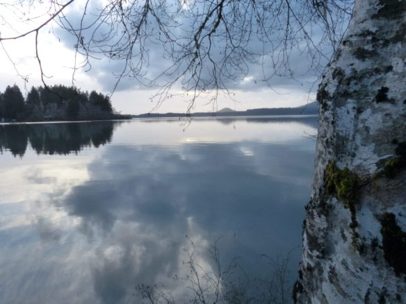 Lake in the rainforest photo