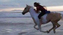 Riding a wild horse photo