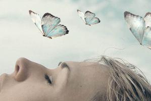 Sueños Taller significado