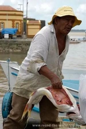 Vendendo peixe nas ruas de Belém