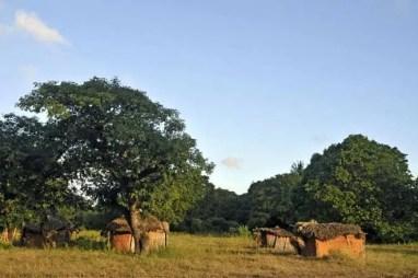 Cubatas no Moçambique profundo