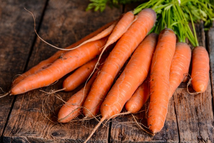 Carrots: Planting, Growing, and Harvesting Carrots | The Old ...