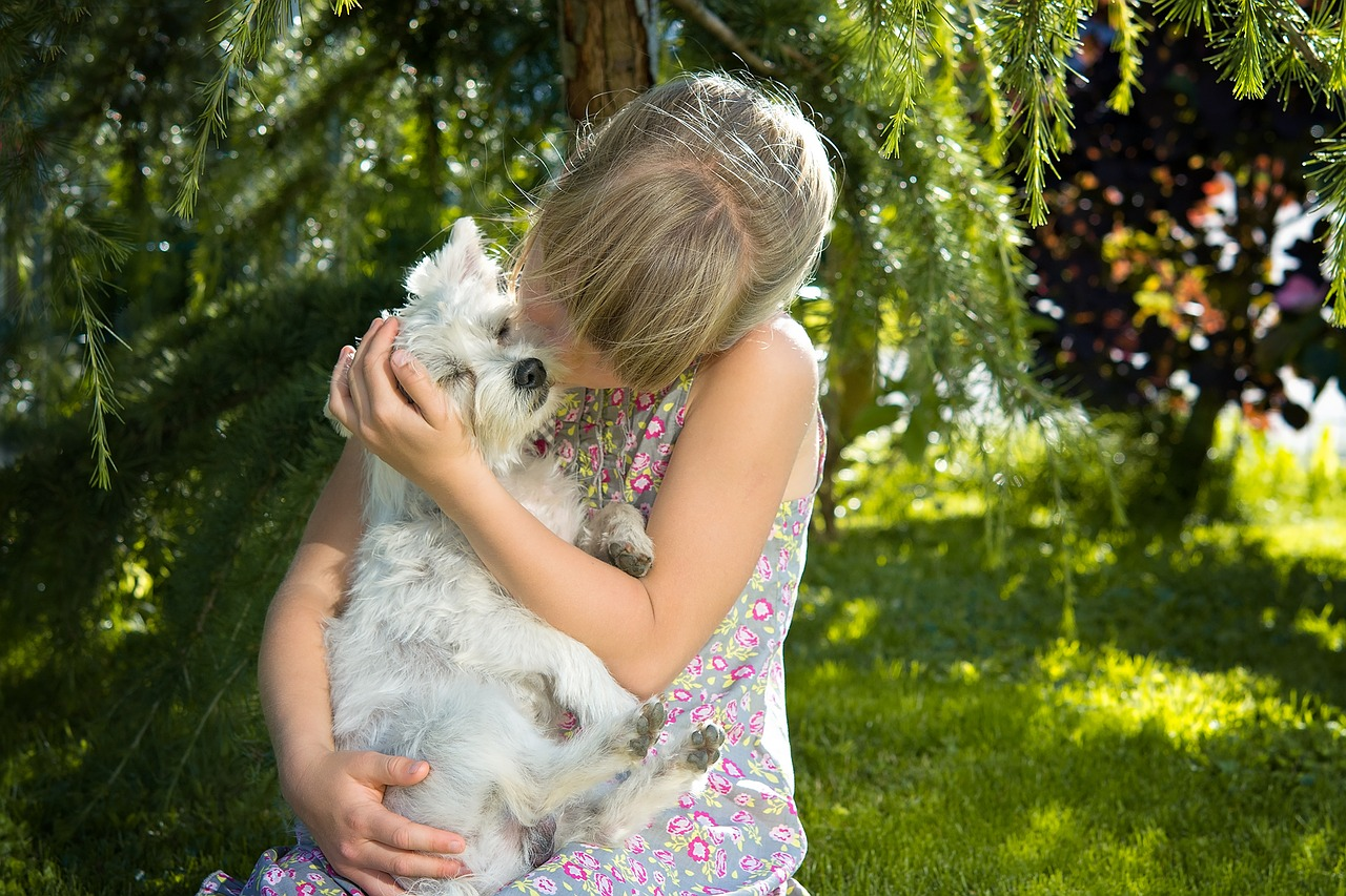 Home Remedies For Dogs Cats Fleas Dry Skin Cuts And More The Old Farmer S Almanac