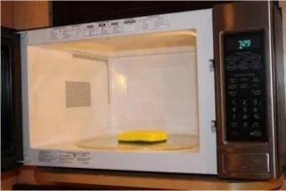 Esponja no microondas