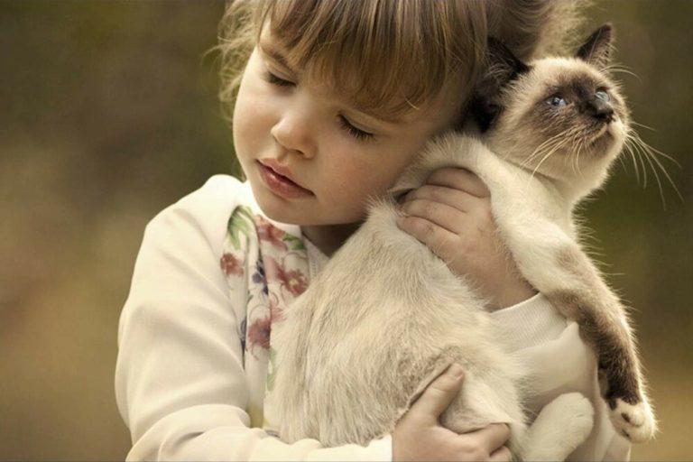 beneficios de que los niños crezcan con un animal en casa