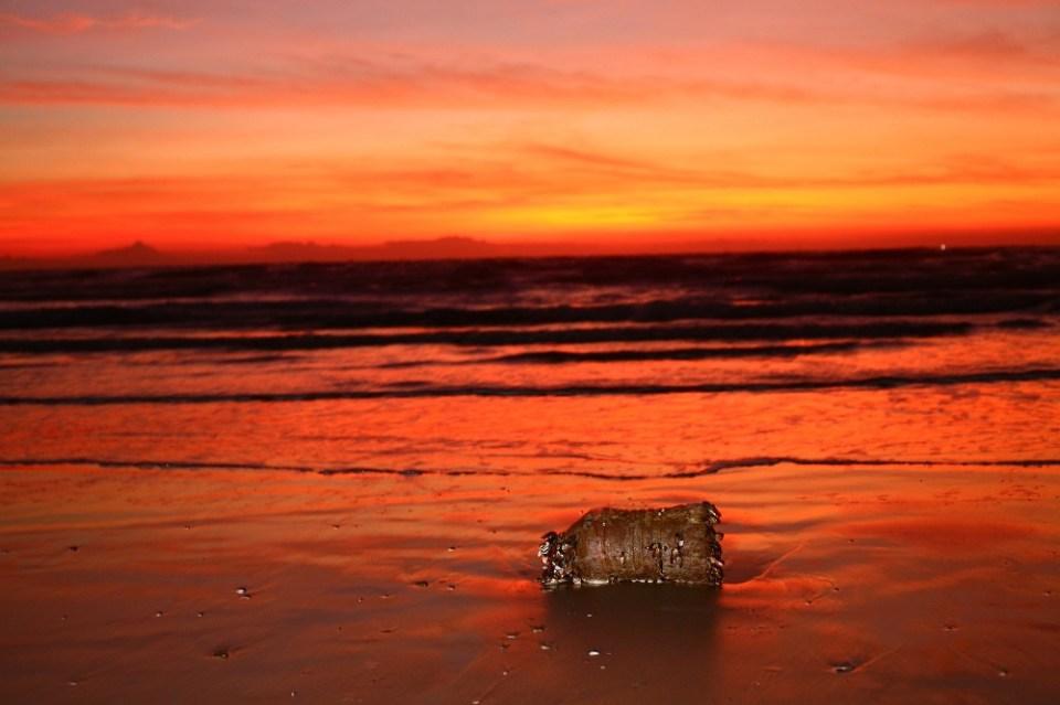 Contaminación de mares y océanos