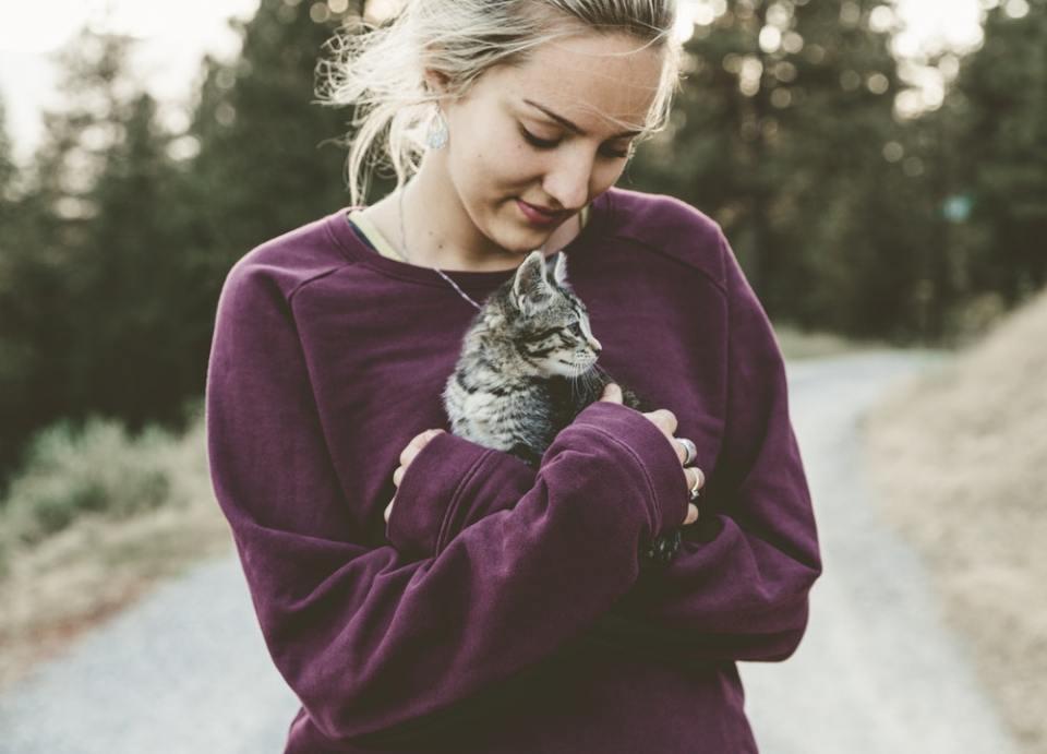 La toxoplasmosis en gatos se contagia a los humanos que entran en contacto oral con las heces de la mascota