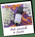 Huile essentielle de CAROTTE, AromaZone