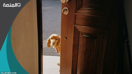 دعاء الدخول الى المنزل والخروج منه