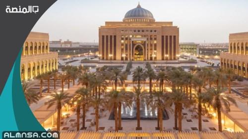 تخصصات جامعة الأميرة نورة ونسب القبول فيها