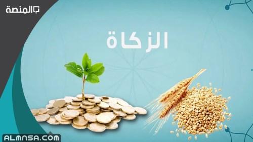 زكاة الفطر هل تخرج مالاً أو طعاماً