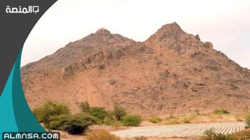 ما أول جبل وضع في الأرض
