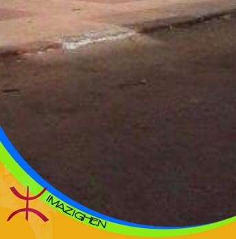 إقتراح وضع العلم الأمازيغي على صورة حساب الفيسبوك يثير جدلاً واسعاً لدى الفيسبوكيون