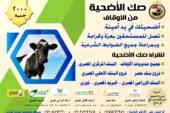 وزير الأوقاف: إطلاق مشروع لحوم صكوك الأضاحي لهذا العام بسعر 2000 جنيه للصك 14- 4- 2021