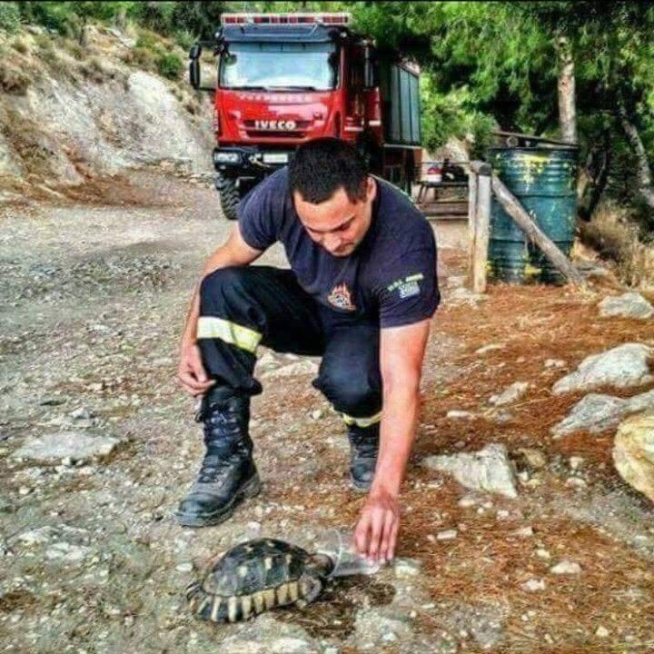 pompier grec