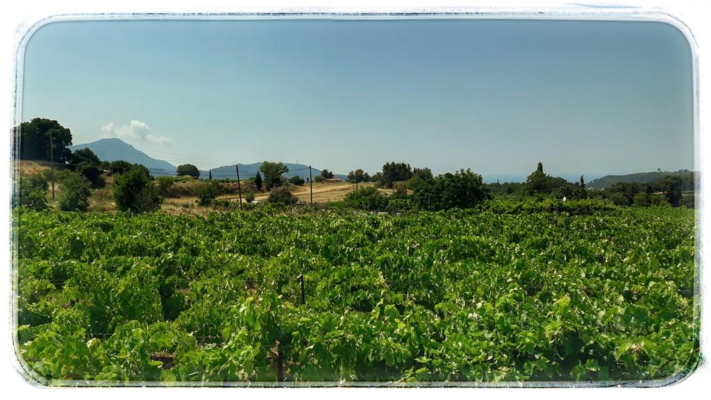 Satele de munte din insula Samos
