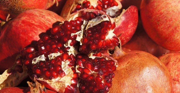 fructe de rodie