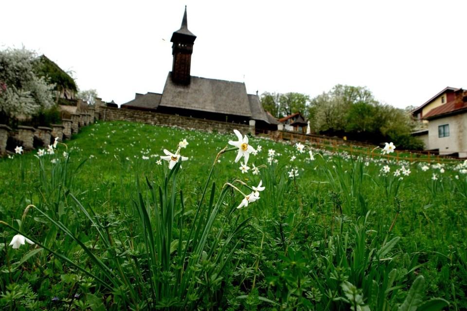 biserica lui Horea din Albac