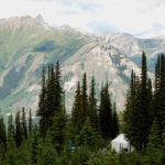 Hermit Thrush Cabin, Valemount, BC, Canada
