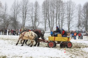 Wagon Slalom at Work Horse Competition