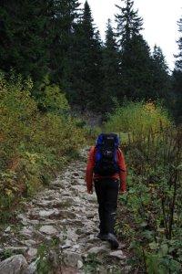 The trail to Chata M.R.Štefánika, a chalet in the Low Tatra (Nizke Tatry) mountains of Slovakia - Almost Bananas