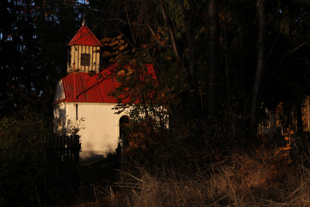 little church in the trees