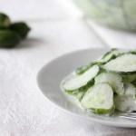 Slovak cream cucumber salad recipe
