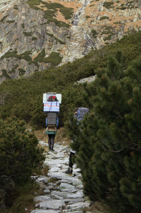 A mountain porter, or nosič, carryies a towering load up the mountain in Slovakia