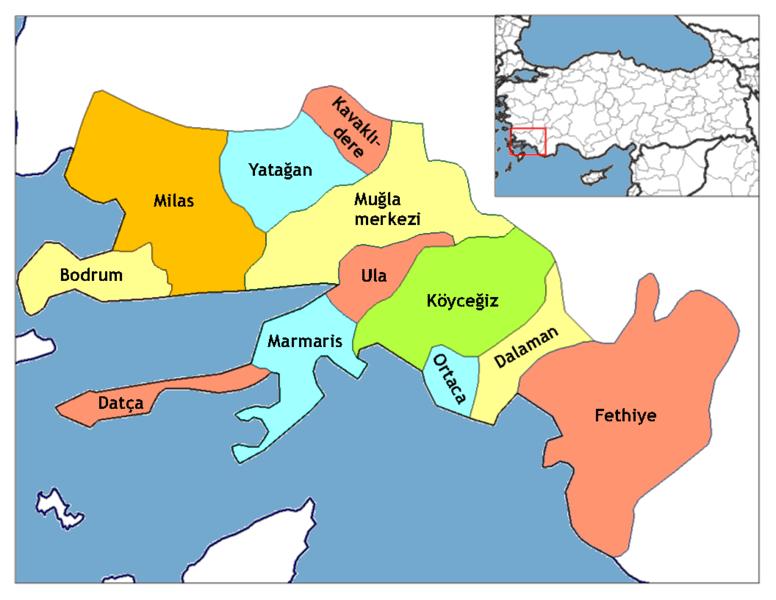 موقع الشاطئ علي الخريطة