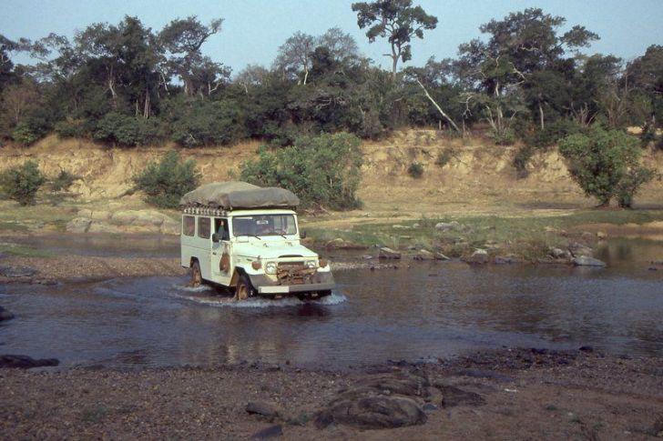 Comoé National Park in Safari