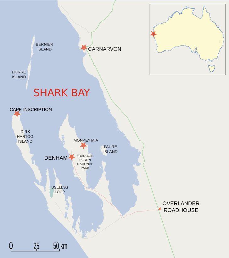 sharks bay map