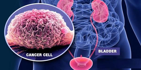 اثر المواد الكيميائية المسرطنة على انقسام الخلايا وتكاثرها