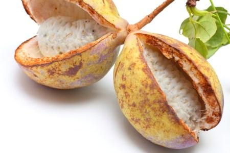 كيناتا - أغرب أنواع الفواكه حول العالم بالصور وأسمائها.. اضغط على الصورة لترى المزيد