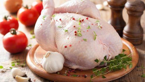 تفسير حلم رؤية الدجاج الني في المنام