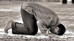 تفسير حلم رؤية الميت ساجد في المنام