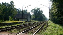 تفسير حلم رؤية سكة القطار في المنام للمتزوجة