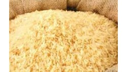 تفسير حلم الأرز الشعير في المنام