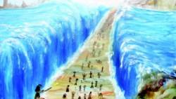 تفسير حلم معجزة عصا سيدنا موسى في المنام