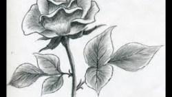 تفسير حلم رسم الورد في المنام