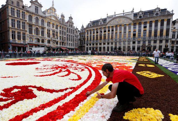 أكبر سجادة من الزهور في العالم2