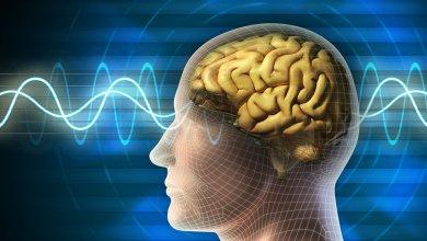 Photo of جديد إيلون ماسك… رقاقة تبث الموسيقى مباشرة إلى الدماغ