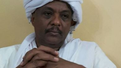 Photo of محمد ضياءالدين: إكتمال تأهيل (100)بص والشروع فى استيراد (1000)اخرى