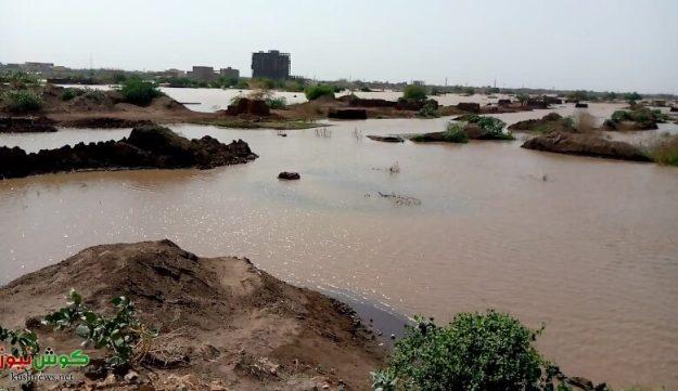فيضان النيل