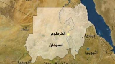 Photo of أبو طالب: 6,5 مليار دولار إجمالي صادرات السودان للعام 2014م
