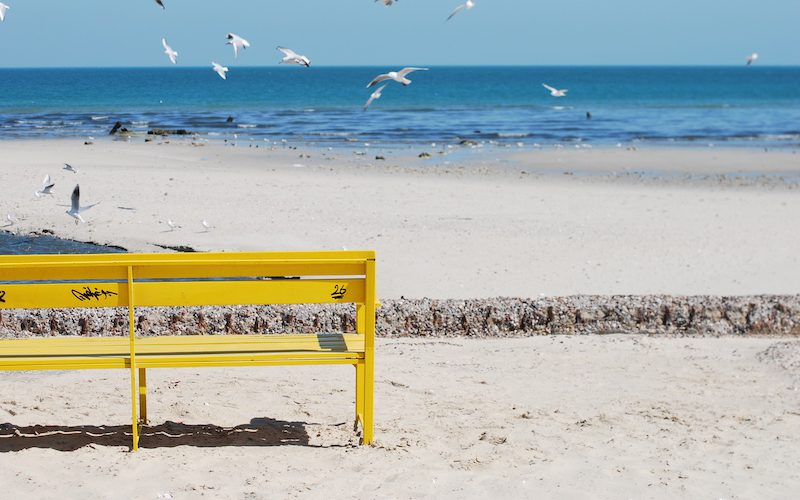 Yellow Benches @fatamiii_87+2
