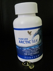 Forever Artic Sea